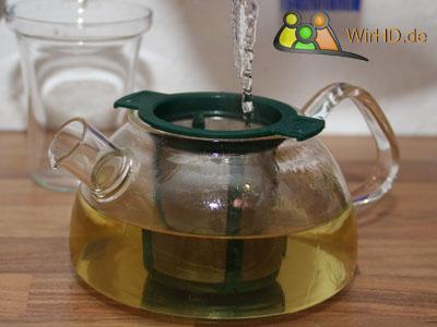 Kleine Teekanne aus Glas mit Filter.