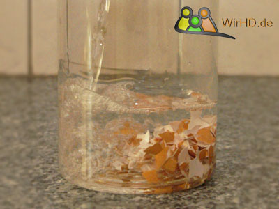 Karaffe mit Eierschalen scheuern, Karaffe mit Eierschalen scheuern, Wasserkaraffen mit einer Eierschale schrubben, Wasserkaraffe mit einem Ei putzen, Wasserkaraffen.