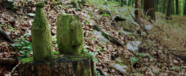 Wie stelle ich eine Holz Wasserkaraffe selber her, sowie Nachteile einer Holz Karaffe.