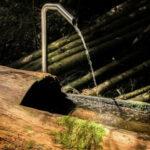 Unbehandeltes Holz zur lagerung von Wasser, sowie Holz imprägnieren.
