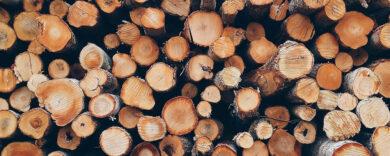 Wasserkaraffe Holz.