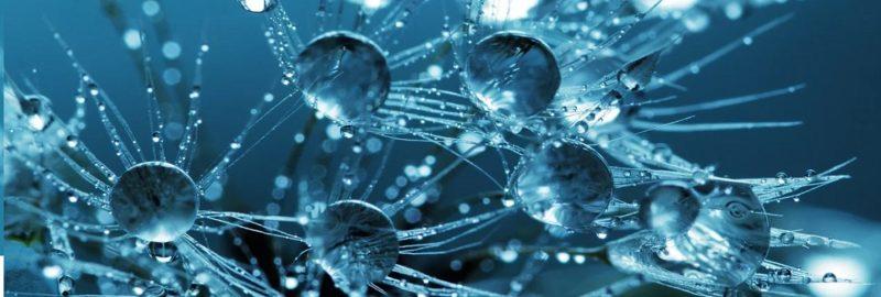 Wasserkaraffen mit Kohlensäurehaltigem Wasser befüllen