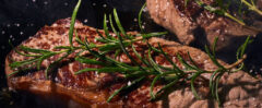 Grillpfanne Grill. Gusseisen Grillpfanne in groß für den Gasgrill, kleine runde Grillpfannen für den Holzkohlegrill