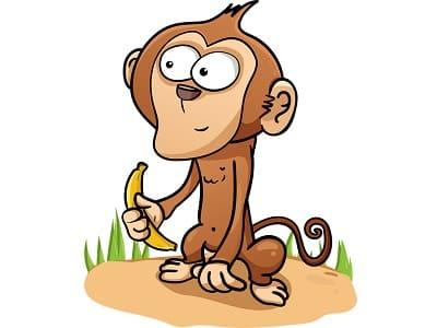 Affe, Schimpanse mit Banane, Äffchen, Dessertbanane, Obstbanane, Paradiesfeige, Sand, Nahrung, köstlich, Gras, lustig, witzig, Spaß.